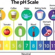 PH چیست و چگونه اندازه گیری می شود
